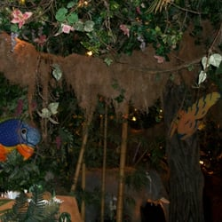 Rainforest Cafe Disneyland Paris Yelp