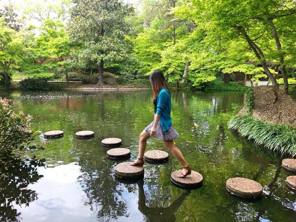 Japanese Garden At The Fort Worth Botanical Garden 141