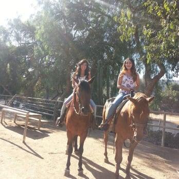 Circle K Riding Stables K Horses