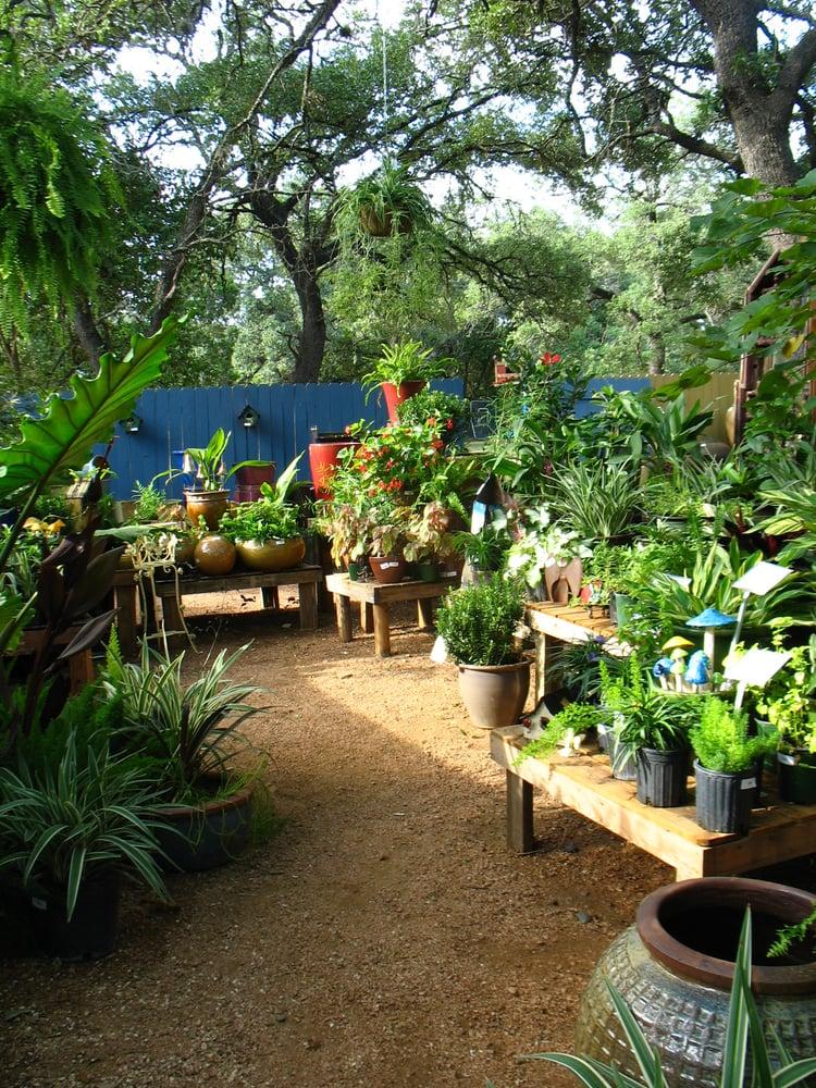 Hill Country Water Gardens - Garden Ideas