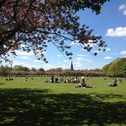 Gorgeous spring day to enjoy the Meadows