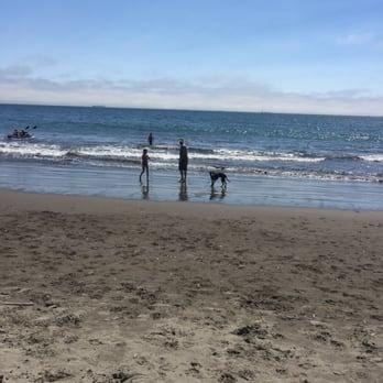 San Leandro Ca To Muir Beach Ca