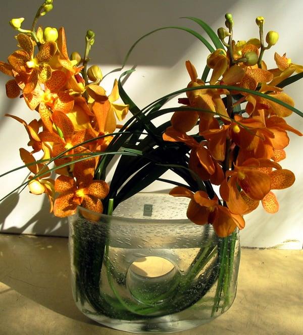 petra m ller blumen blumenladen florist schwanthalerh he m nchen bayern yelp. Black Bedroom Furniture Sets. Home Design Ideas