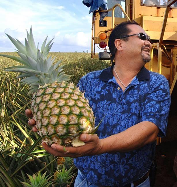 Maui Pineapple Tour Yelp