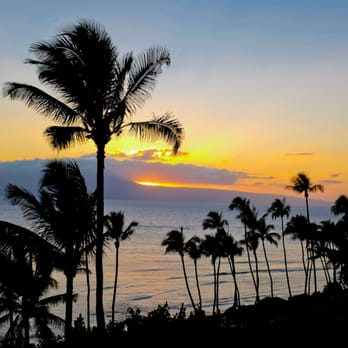 how to get discount for hyatt maui room