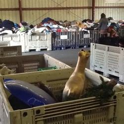 2,000+ Santa Cruz Clothing, Santa Cruz Apparel, Santa Cruz