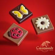 http://www.cacaomundo.com/schokii, Lauf an der Pegnitz, Bayern