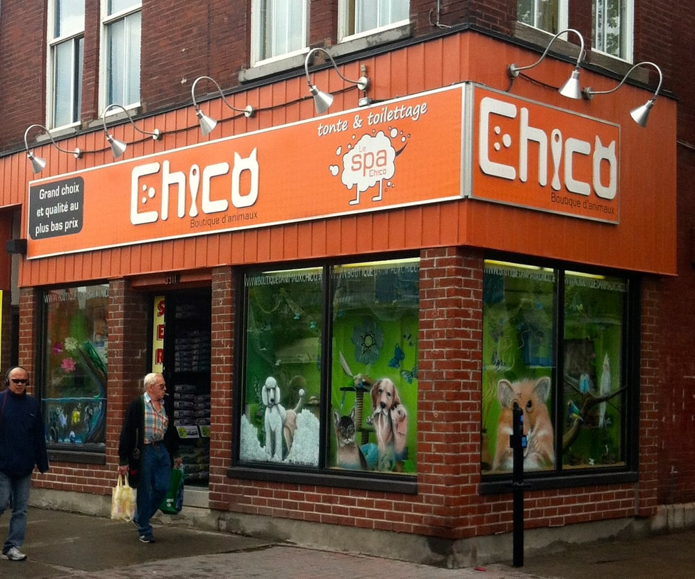 chico pet stores montreal qc yelp. Black Bedroom Furniture Sets. Home Design Ideas