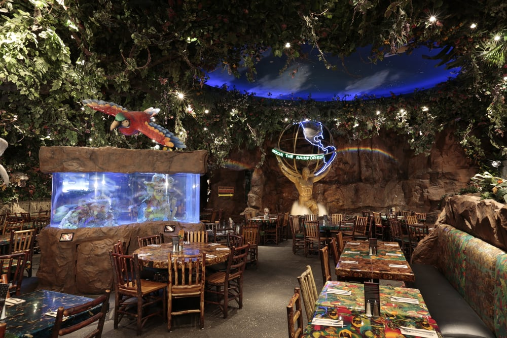 Rainforest Cafe Nj Hours