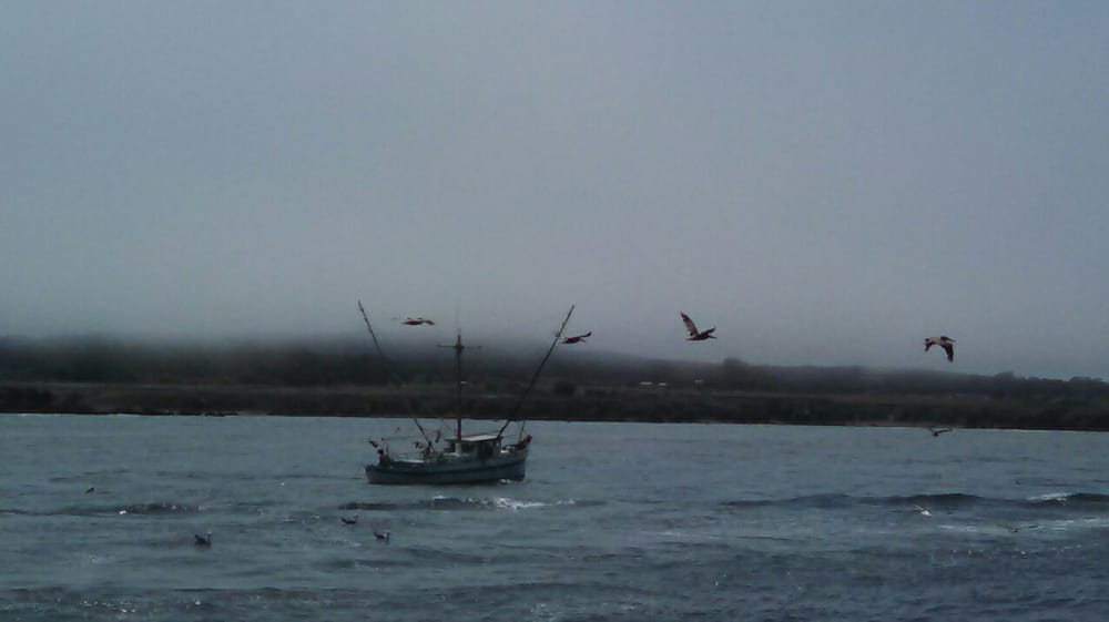 Anchor charter boats boating fort bragg ca yelp for Fort bragg fishing charters