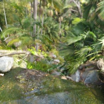 San Diego Botanic Garden Encinitas Encinitas Ca United States Yelp