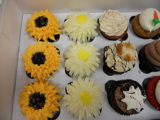 CocoBeni Confections - Garden Variety Cupcakes - Northborough, MA, Vereinigte Staaten