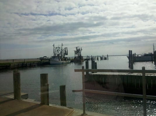 bacliff dating Gulf coast weekly fishing reports for selected texas inland and coastal waters,  with access to past reports.