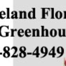Treeland Florists & Greenhouses - New Bedford, MA, Vereinigte Staaten