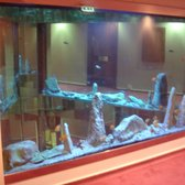 Fish tanks near the lifts
