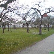 Schloss und Hofgarten Dachau, Dachau, Bayern