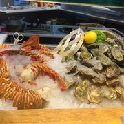 Oysters & lobster