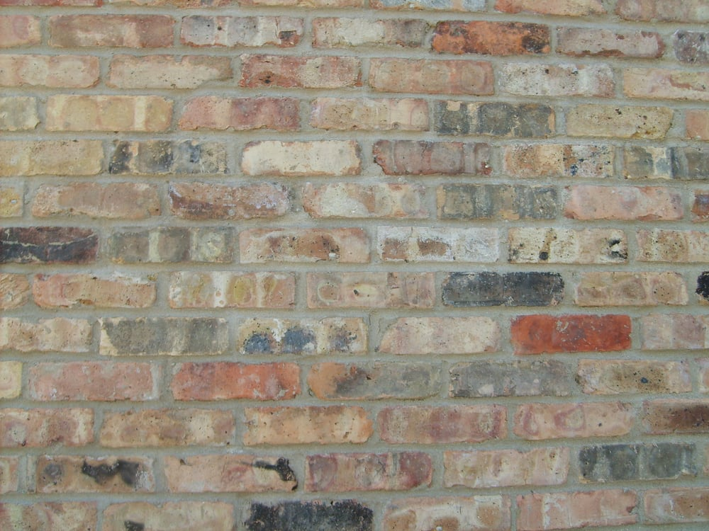 Reclaimed Chicago Common Brick Yelp