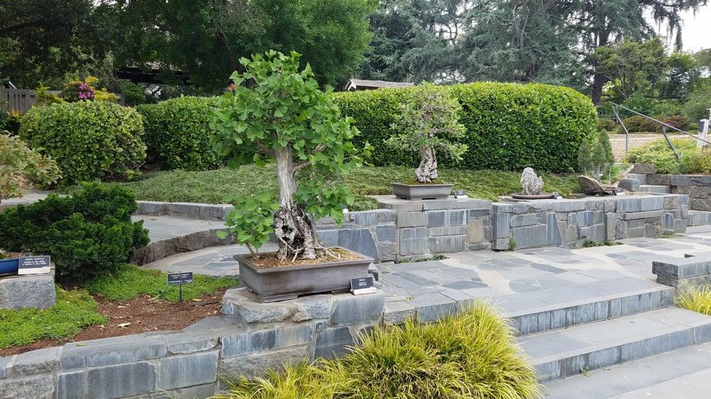 Photos For Huntington Library Art Collections Botanical Gardens Yelp