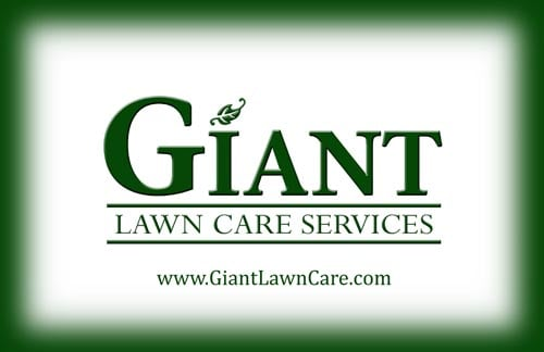Giant lawn care services landscaping london on for Local lawn care services
