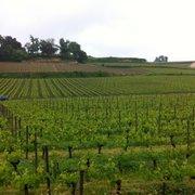 Hostellerie de Plaisance - Saint Emilion, Gironde, France. Wineries