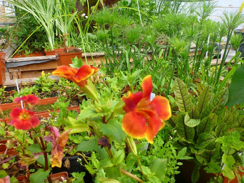 Utah Water Gardens Salt Lake City Ut