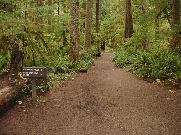 Port Angeles (WA) United States  City new picture : Marymere Falls Port Angeles, WA, United States