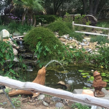 Myrtle Creek Botanical Gardens Nursery 257 Photos 81 Reviews Nurseries Gardening
