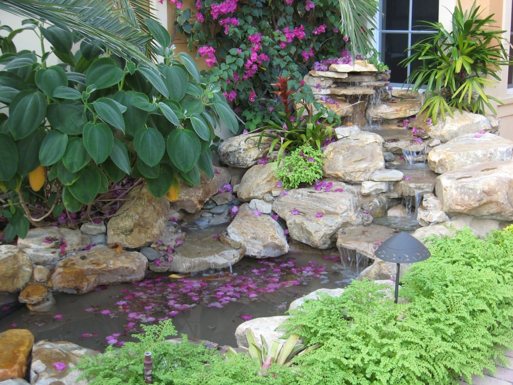 Small garden pond and waterfall in florida front yard yelp for Garden waterfall fountain