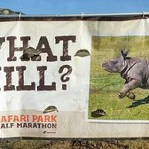 Safari Park Half Marathon - Escondido, CA, États-Unis. It's the hill the rhino horn is pointing at :)