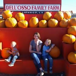 Lathrop pumpkin patch hours victoria