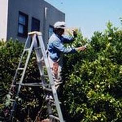 All Seasons Gardening & Landscaping Services - Landscaping maintenance in San Francisco. - San Francisco, CA, Vereinigte Staaten