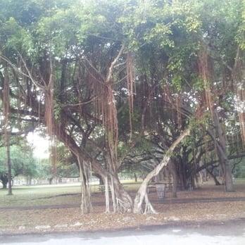 Greynolds Park N Miami Beach
