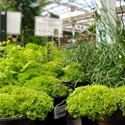 Molbak S Garden Home Woodinville Wa