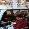 Trabbi zum reinsetzen / east german car - take a seat!
