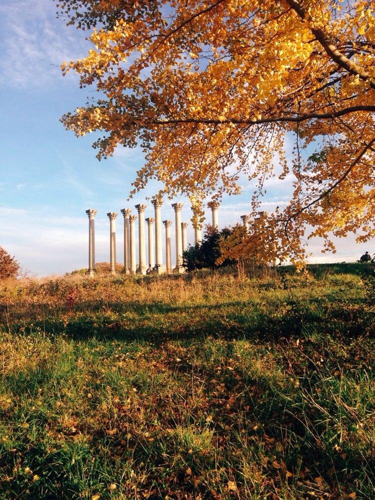 National Arboretum 537 Photos Botanical Gardens Washington Dc United States Reviews Yelp