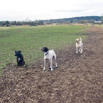 Redmond Off Leash Dog Parks