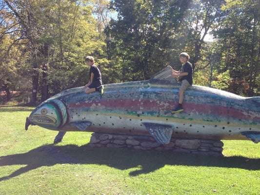 Grandfather trout ponds banner elk nc united states yelp for Trout fishing ponds near me