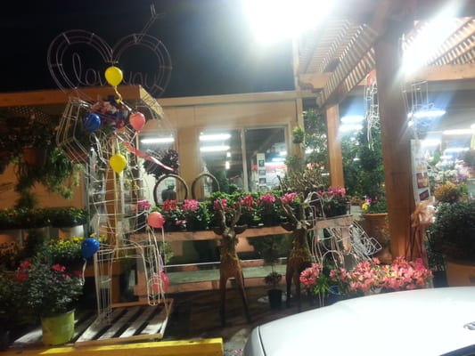Fannin flower garden center florists houston tx yelp Houston garden centers houston tx