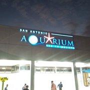 San Antonio Aquarium - 162 Photos - Aquariums - 6320 ...