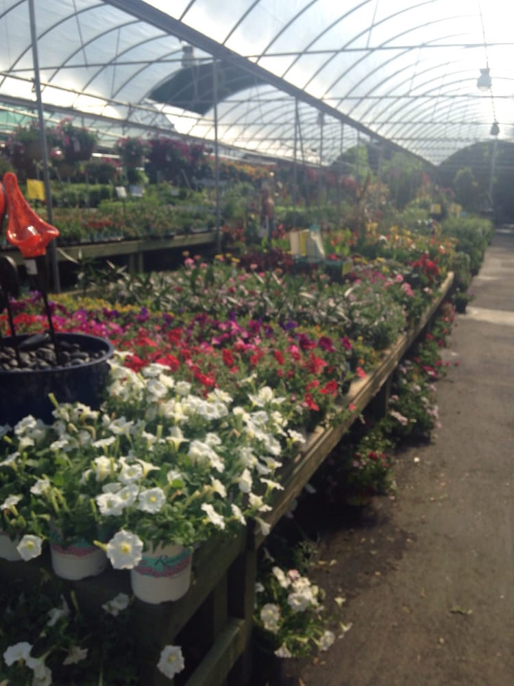 Pike Nurseries 10 Photos Gardening Centres Buckhead