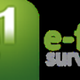 E-First Surveyors