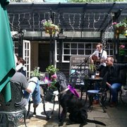 Nice chilled out music at the sheep…