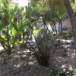 Jard n bot nico el caracol botanical gardens zona r o for Caracoles en el jardin
