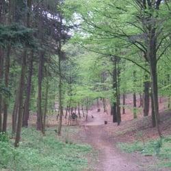 lutherpark - wohnortnahe grünoase