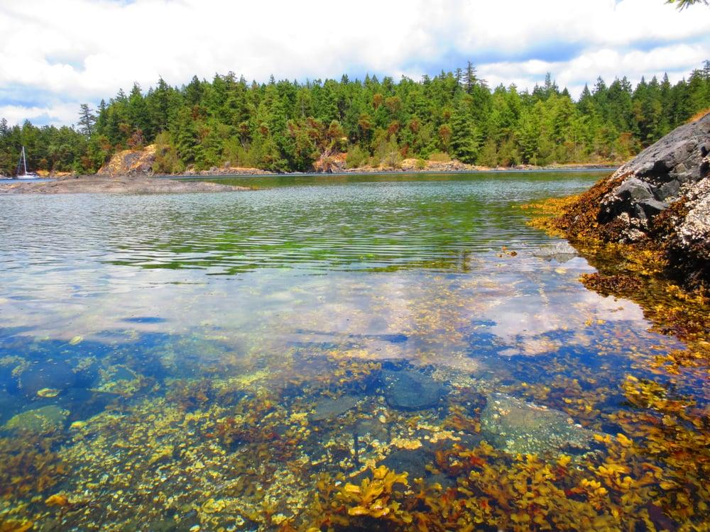 Smuggler Cove Provincial Park Smuggler Cove Marine Provincial Park Smugglers Cove Halfmoon Bay bc