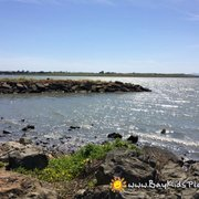 Eastshore State Park - Pedestrian and bicycle trails run almost the entire length of the park and provide a panoramic view of the Bay.(baykidsplay.com) - Emeryville, CA, Vereinigte Staaten