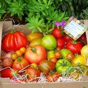 La ferme végétale de Boiséon