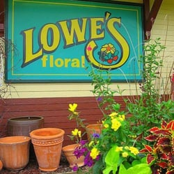 Lowe S Floral Florists Minot Nd Yelp