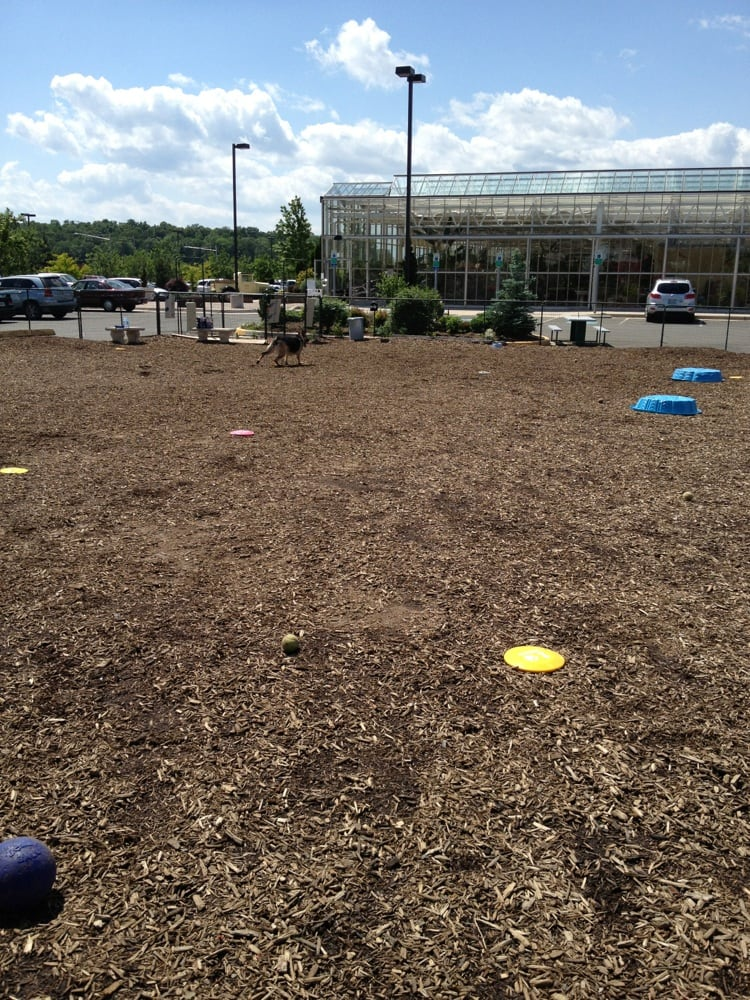 Merrifield Garden Center 26 Photos Gardening Centres 6895 Wellington Rd Gainesville Va